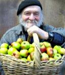 apples 018