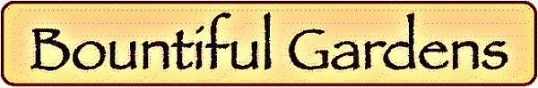 BG logo 2